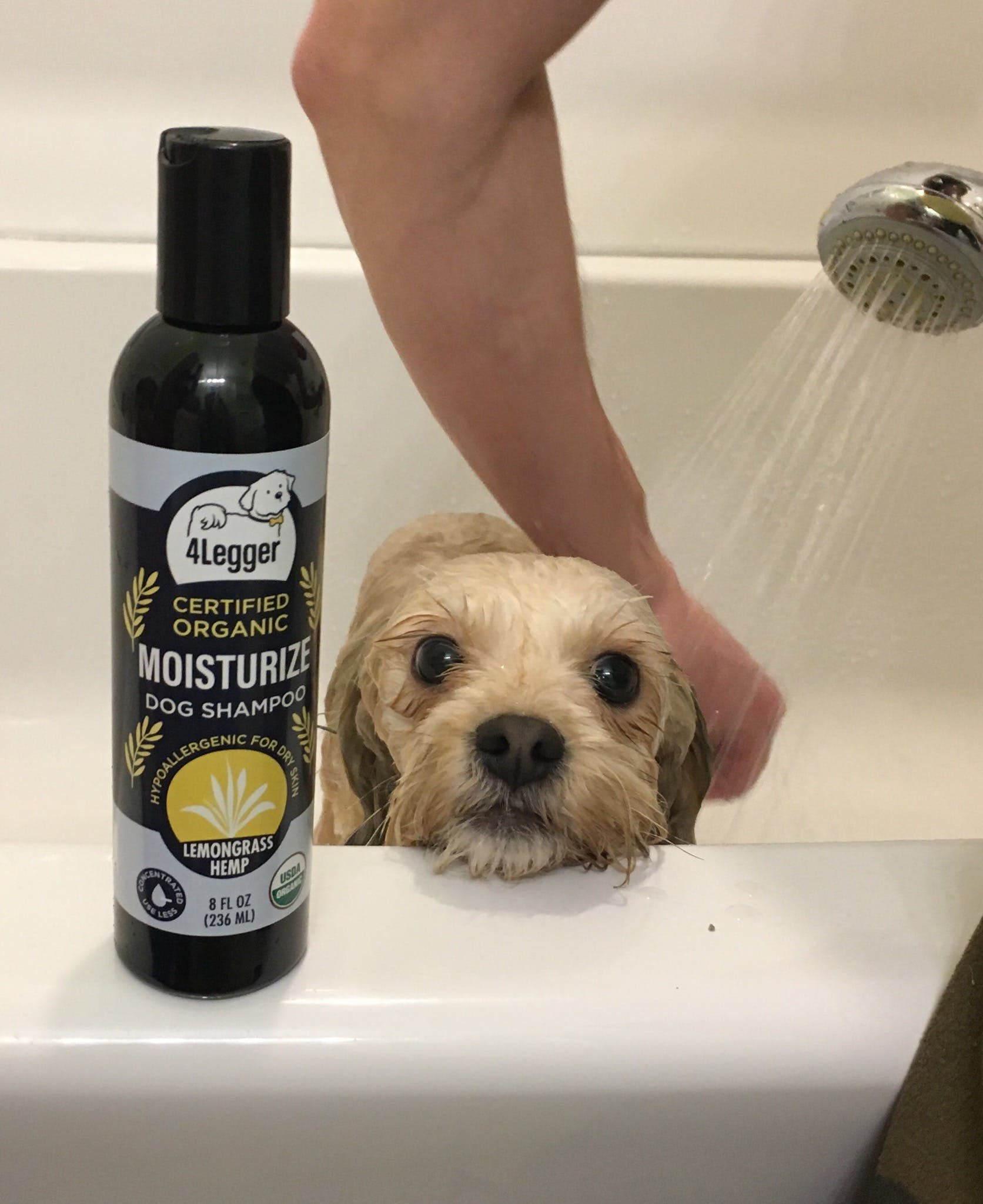 MOISTURIZE - USDA Certified Organic Dog Shampoo with Lemongrass and Hemp