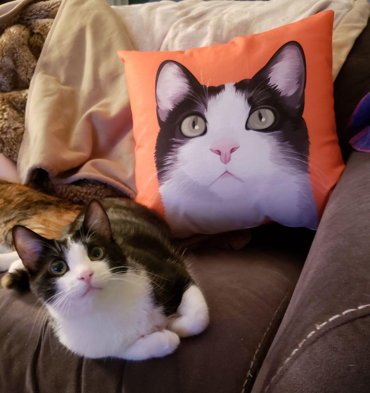 Custom Couch Stuffed Pillow