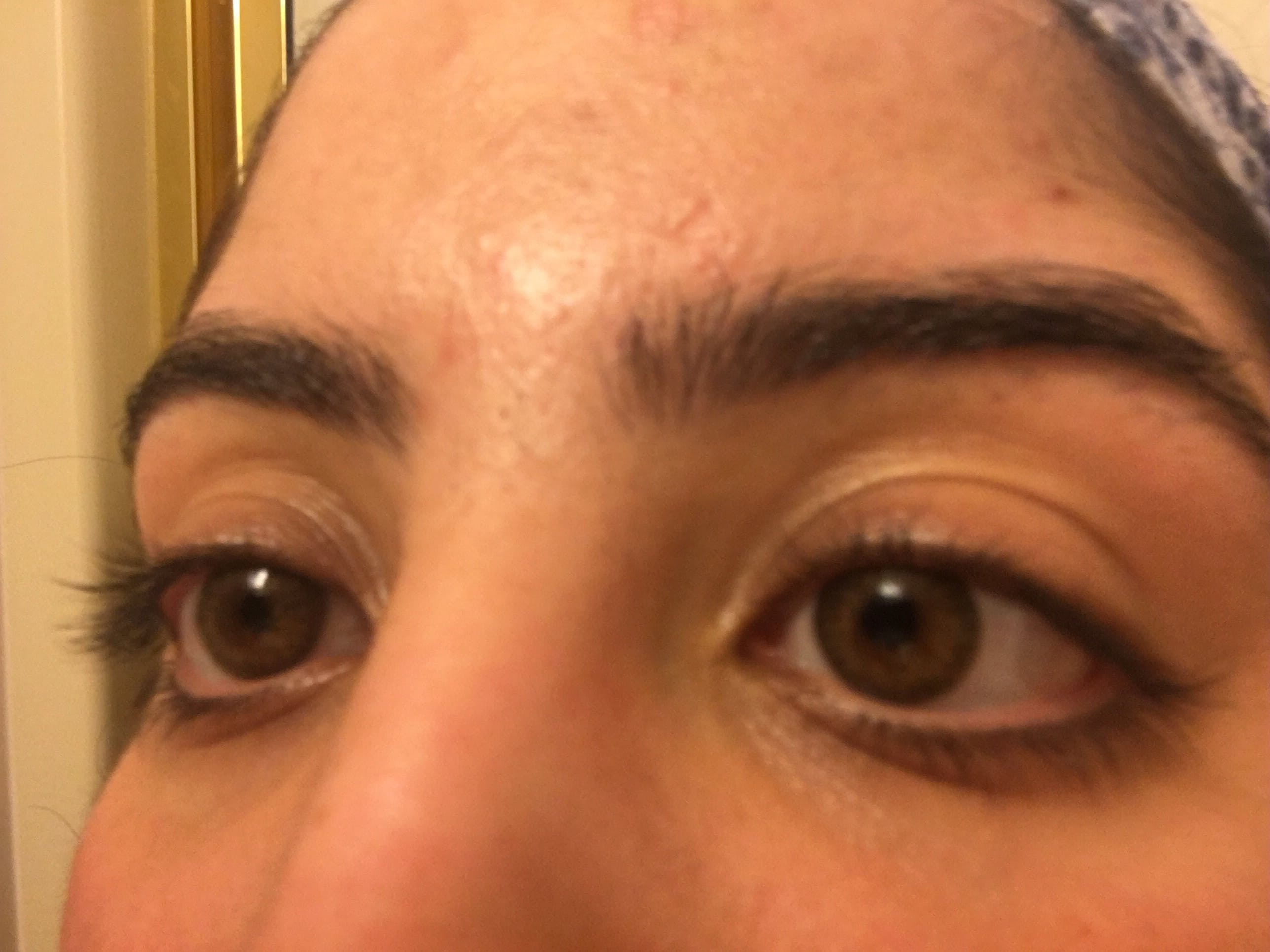 bafd781b0153b Buy Freshlook Colorblends Pure Hazel Colored Contacts