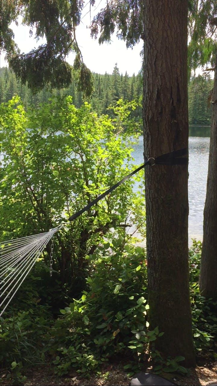 Hammock Tree Straps Buy Online Hammock Universe Canada