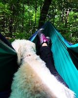 Camping Hammock Expedition Hammock Universe Canada