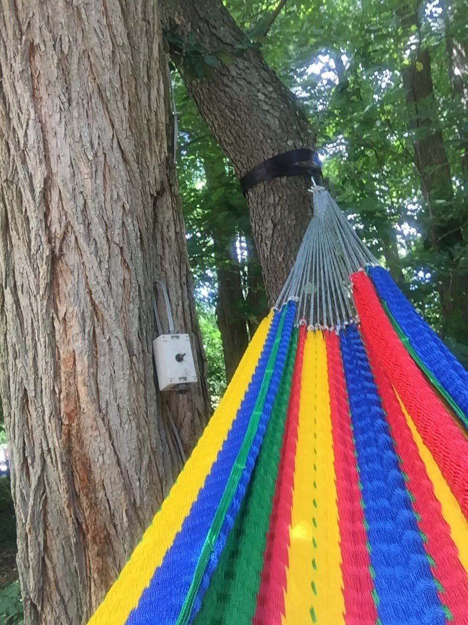 user picture hanging accessories  eco friendly hammock tree straps  rh   hammockuniverseusa