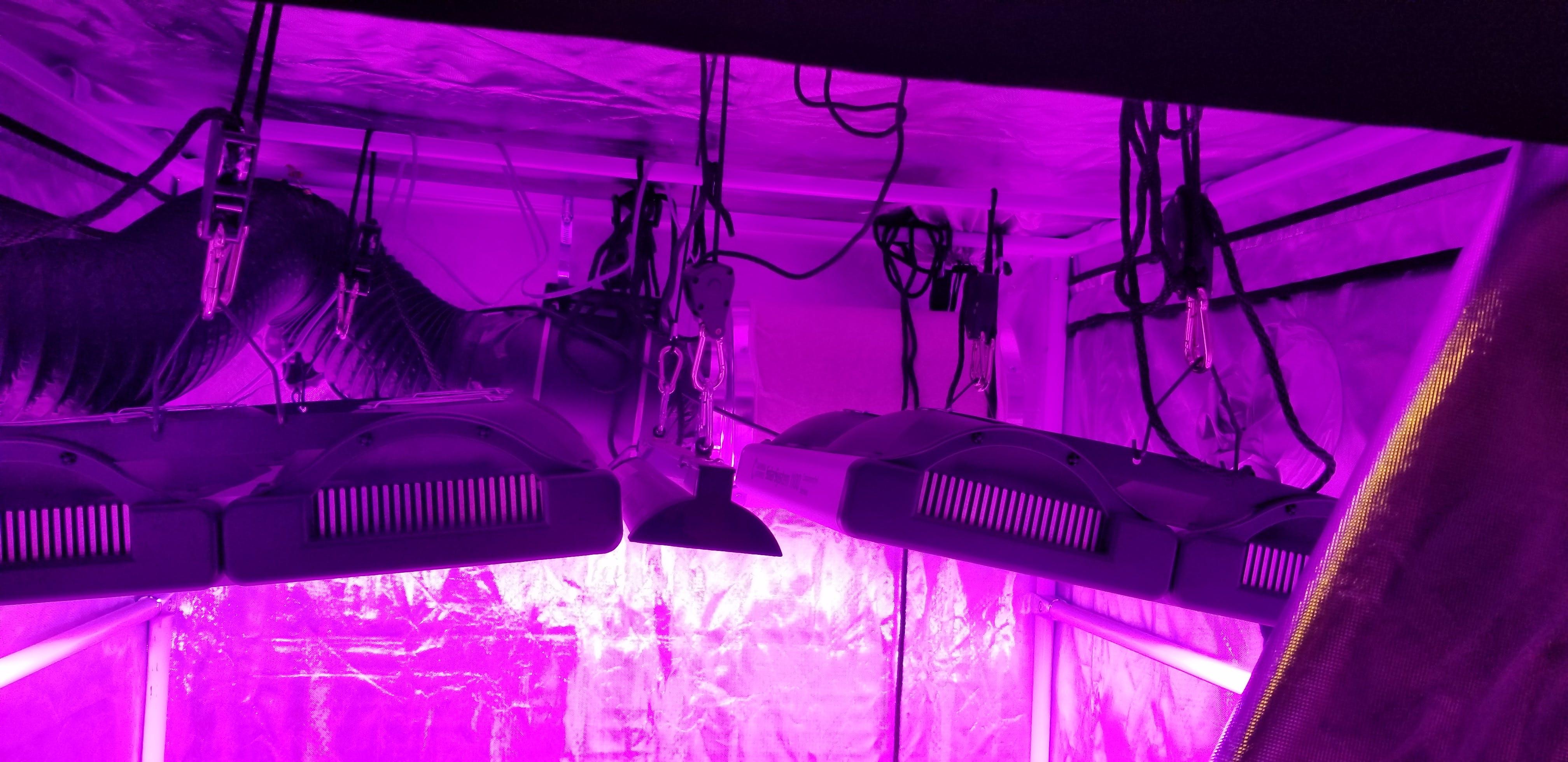 California Lightworks SolarSystem 1100