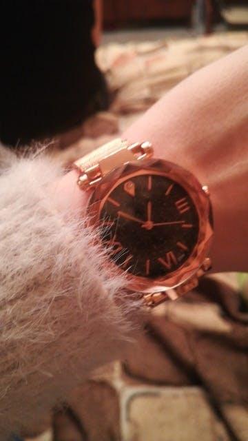 Woman Casual Stainless Steel Quartz Wrist Watch