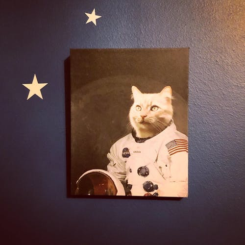 The Astronaut - Custom (Your Pet) Portrait