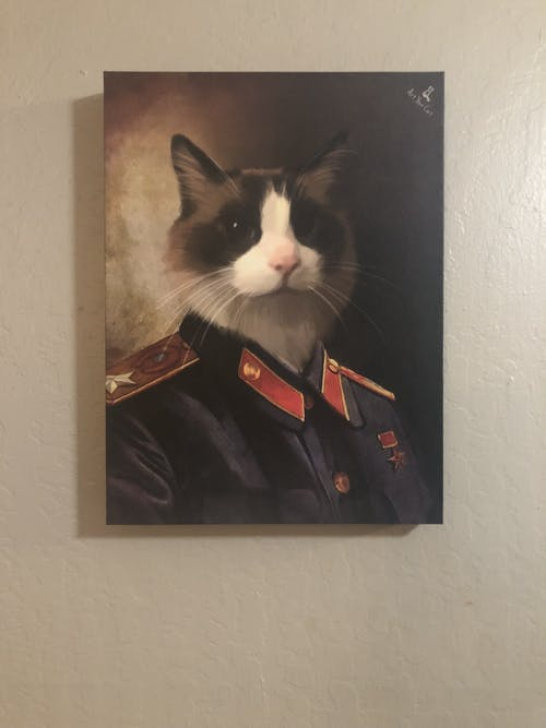 Joseph Stalin - Custom (Your Pet) Portrait