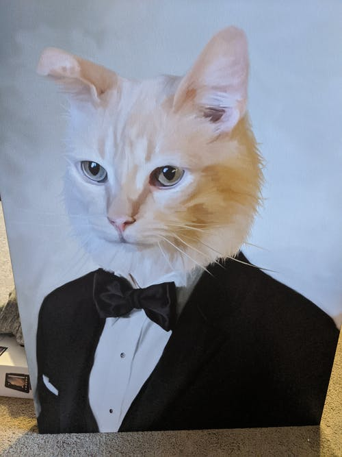 The Tuxedo - Custom (Your Pet) Portrait