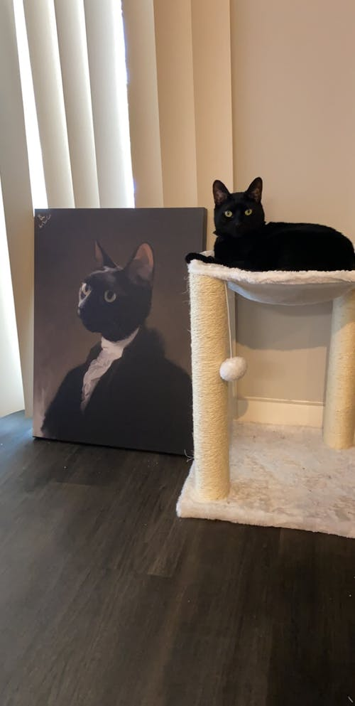 George Washington - Custom (Your Pet) Portrait
