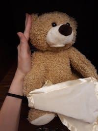 The Peek A Boo Bear