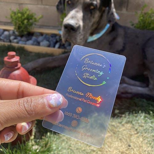 Clear Transparent Plastic Business Cards | 1-3 color of foils