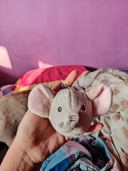 Plush Stress Toy Keychain