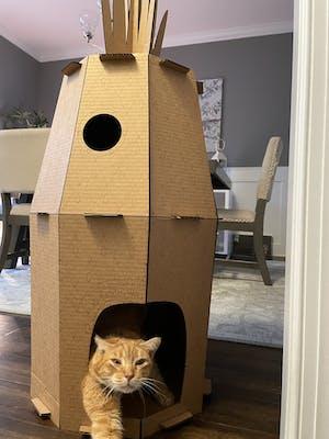 Pineapple Cat House