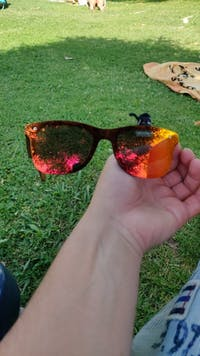 Men's Wood Breeze Polarised Sunglasses
