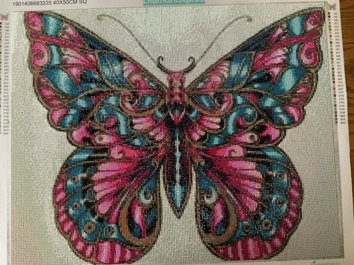 Colorful Butterfly Diamond Painting square