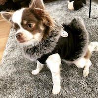 Furry Furry Black Time Tuigje/Jas