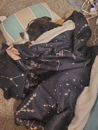 Dreamer Hooded Blanket