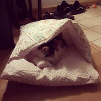 Cozy Cat Bed, Washable Sleeping Bag for Cat & Dog