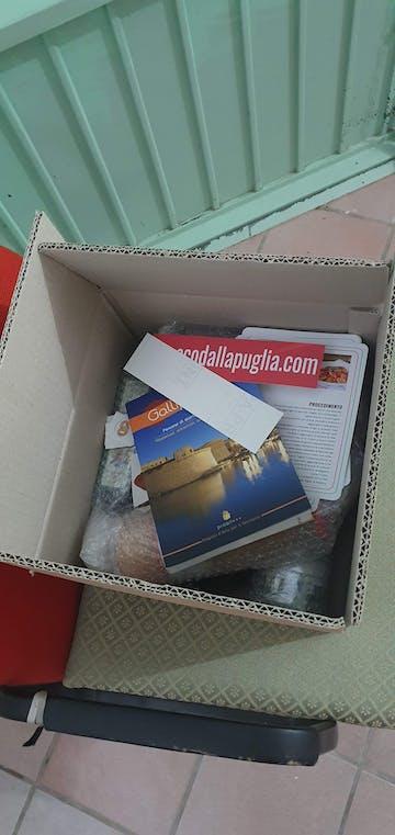 PUGLIA BOX BASIC