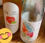 【基本送料無料・数量限定】「酒ガチャ福袋【梅】プラン」