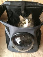 The Fat Cat Pod - Backpack For Larger Cats