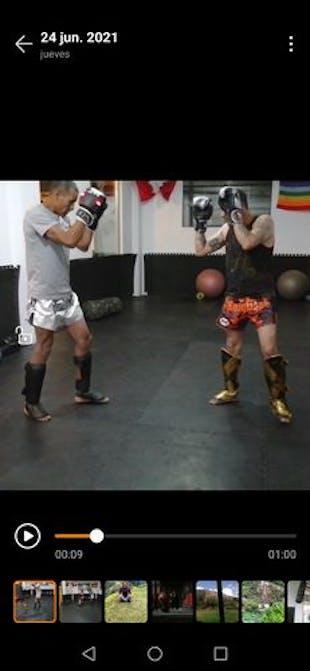 Guantes Twins Special Dragon 49 Plateado Boxeo y Muay thai - 100% Cuero