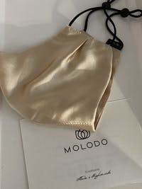 Silk Protection Mask - Gold