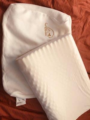 JSY Latex - Contour Latex pillow - Massage