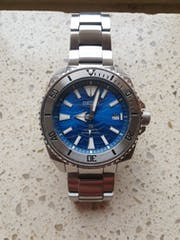 SRP Turtle Sub Bezel: Polished Finish