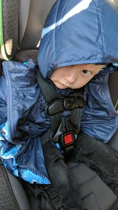 Car Seat Safety  Road Coat®Down Jacket - Navy - Raptor Print