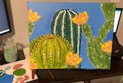 Bright Succulents