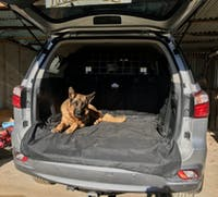 Pawmanity Cargo Liner