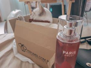 Bath & Body Works Paris Amour Fragrance Mist 236ml