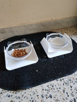 Adjustable Pet Feeder Bowl