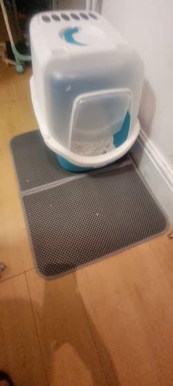 Anti Slip Cat Litter Mat With Waterproof Bottom