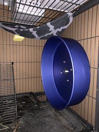 "DELUXE 16"" COLORED Silent Wheel - Pet Exercise Wheel - Chinchilla Wheel - Prairie Dog Wheel - Squirrel Wheel - Sugar Glider Wheel"