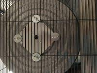 "ESSENTIALS 16"" SILENT Chinchilla Exercise Wheel"