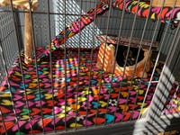 DELUXE Set Absorbent DOUBLE UNIT Critter Nation/Ferret Nation Cage Liners