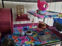 Pet Revolution® SCATTER GUARDS for Critter Nation & Ferret Nation Cages