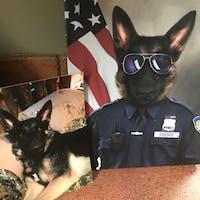 Pet Policeman male pet portrait