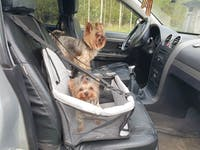 Pet Car Seat Booster