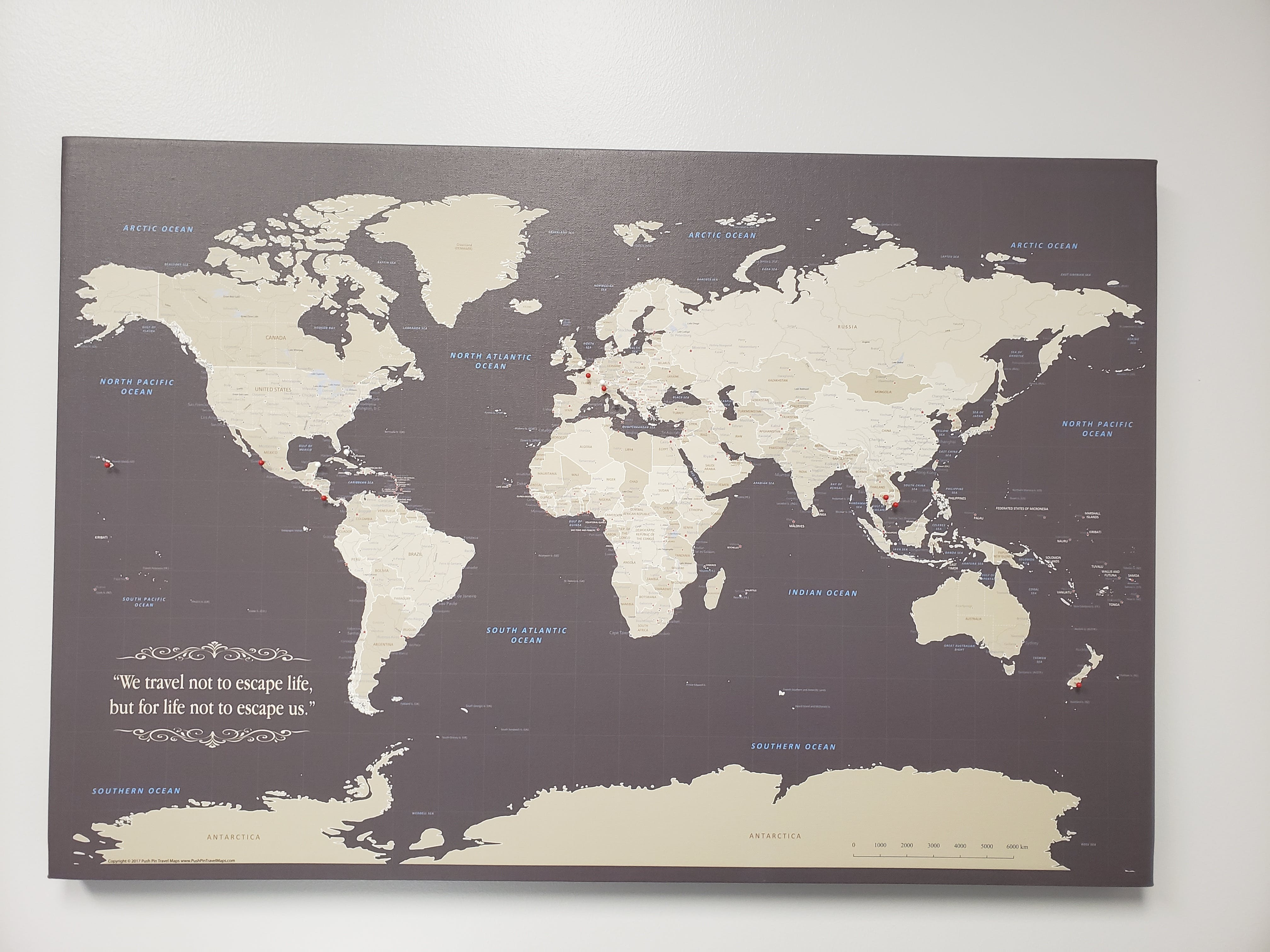 Gallery Wrapped - Earth Toned World Travel Map with pins