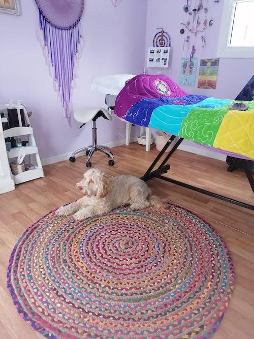 Chakra Meditation Blanket - Rainbow