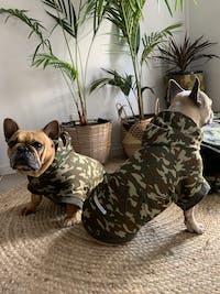 Bamboo Dog Hoodie | Camo