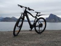 ClassyWalk® MB200 EL-sykkel
