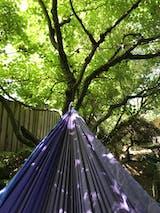 Double Hammock Lifetime Warranty Camp Travel Life