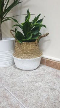 Jude Seagrass Storage & Planter Basket (Small)