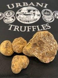 Fresh White Truffles 2 oz (Tuber magnatum pico)