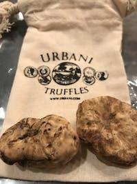 Fresh White Truffles SMALL SIZE