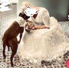 Half Sleeve V-neck 3D Floral Lace Wedding Dresses VW1869